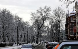 Samochody na ul. Bydgoskiej
