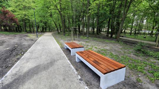 Ławki w parku tysiąclecia, fot. Sławomir Kowalski