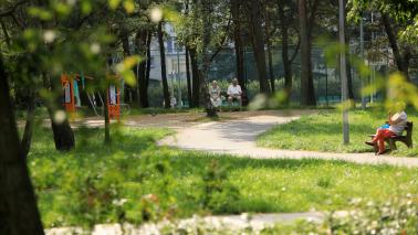 Alejki w parku Na Skarpie, fot. Sławomir Kowalski
