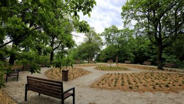 Park Glazja po rewitalizacji, fot. Sławomir Kowalski