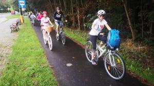 Na zdjęciu widać grupę rowerzystów jadących ścieżką rowerową