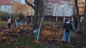 Na zdjęciu: młodzież sprzątająca opadłe liście