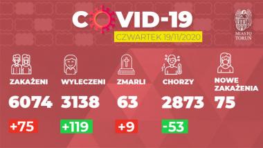 grafika dziennych zakażeń w Toruniu na 19.11.2020