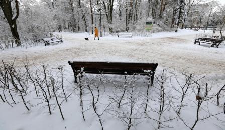 Ośnieżona ławka parkowa na Bydgoskim Przedmieściu